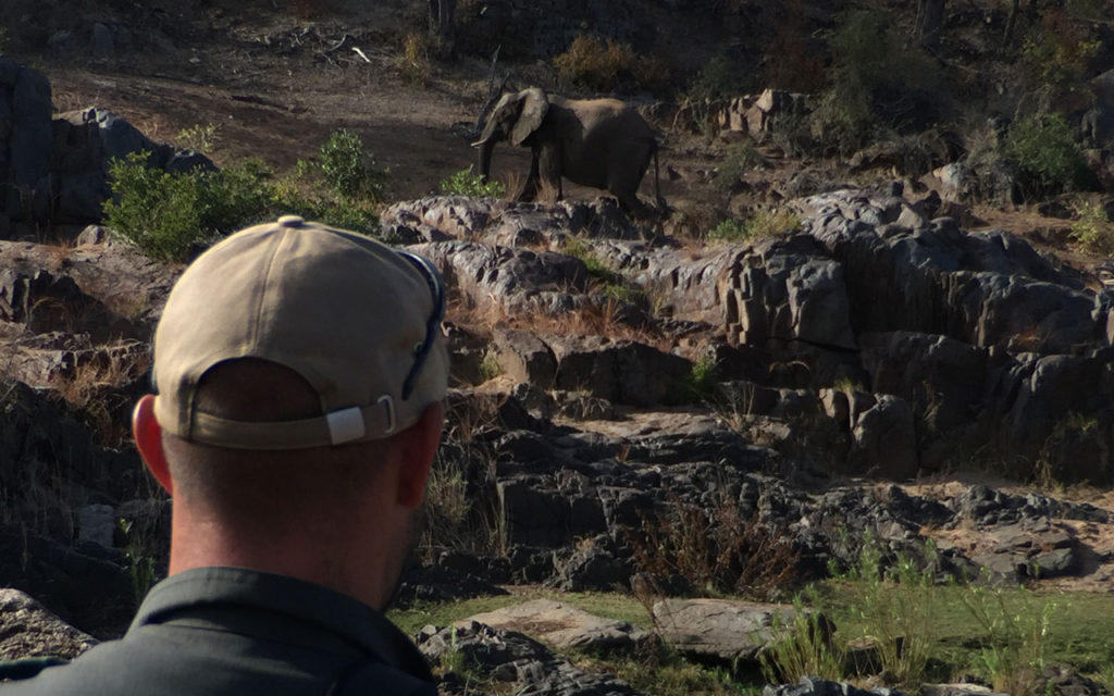Elephant encounter on the Backpack Trail in Kruger National Park