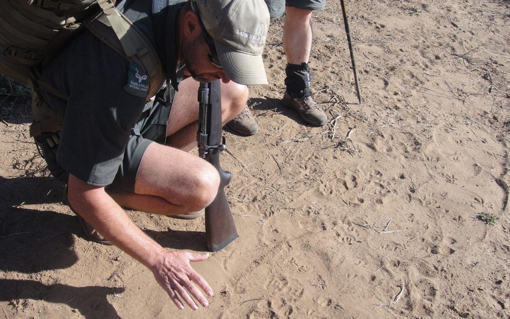 Kruger Backpack Trails - traks