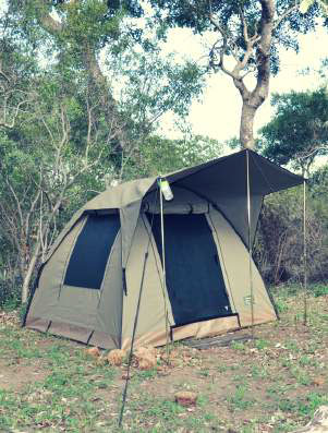 Tented Camp on the Lowveld Walking Safari Trails in Timbavati.